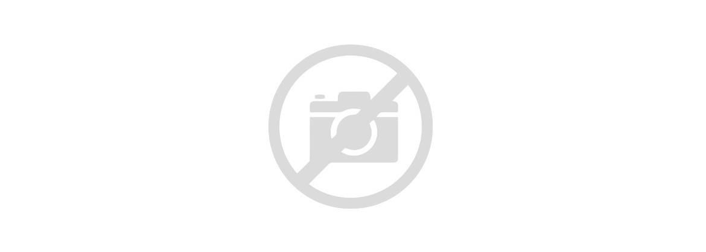 2812 Smolniki - nowy typ